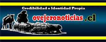 Credibilidad e Identidad Propia | Noticias de la región de Magallanes