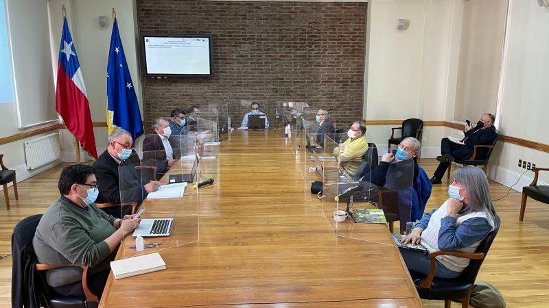 CORE acordó reunirse con seremi de Bienes Nacionales para generar estrategia y planificar futuras concesiones de terrenos fiscales